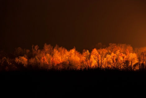 The fire from a flare at a Marcellus Shale Well lights up the trees near Enon Valley, PA