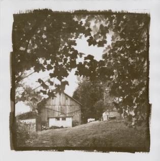 VanDyke Print by Bob Olson